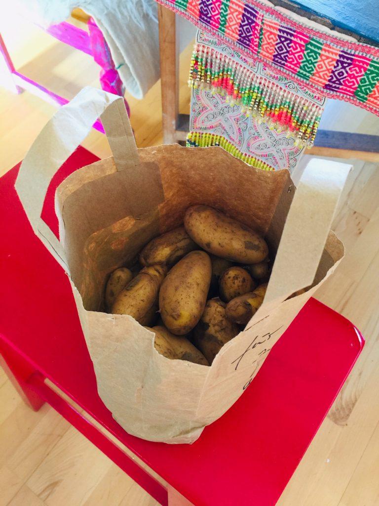 Kartoffeln von einer Freundin geschenkt bekommen